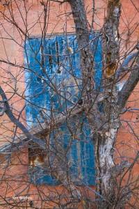 Blue Shutter by Kim Robbins
