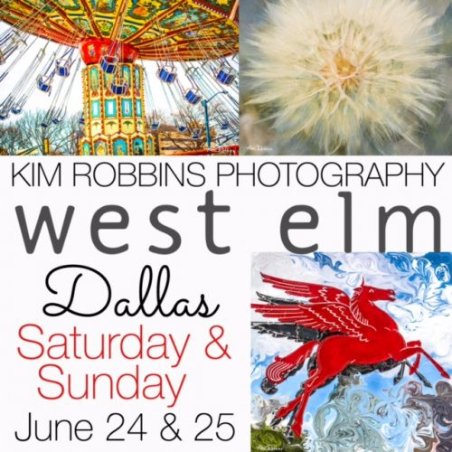 West Elm Featured Artist @ West Elm Dallas | Dallas | Texas | United States