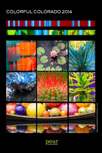 Colorful Colorado- 2014 Collage